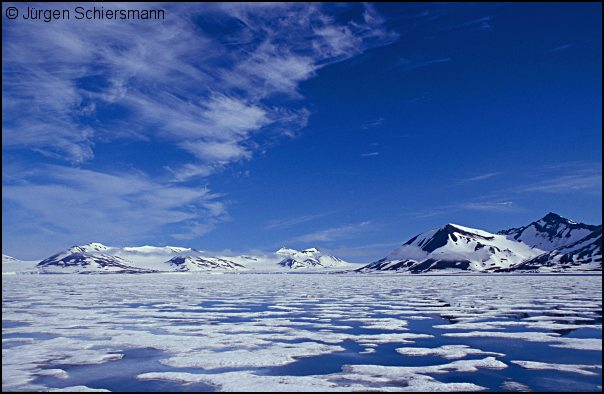 arctic landscape photo - 4