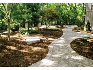 commercial landscape edging photo - 4