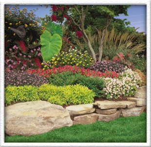 free landscaping photo - 18