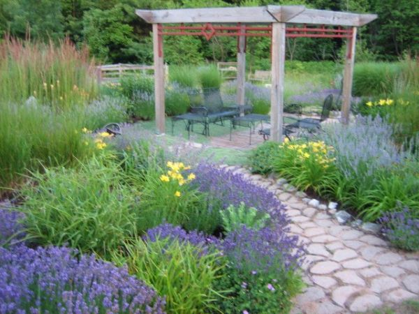 front yards landscaping photo - 15