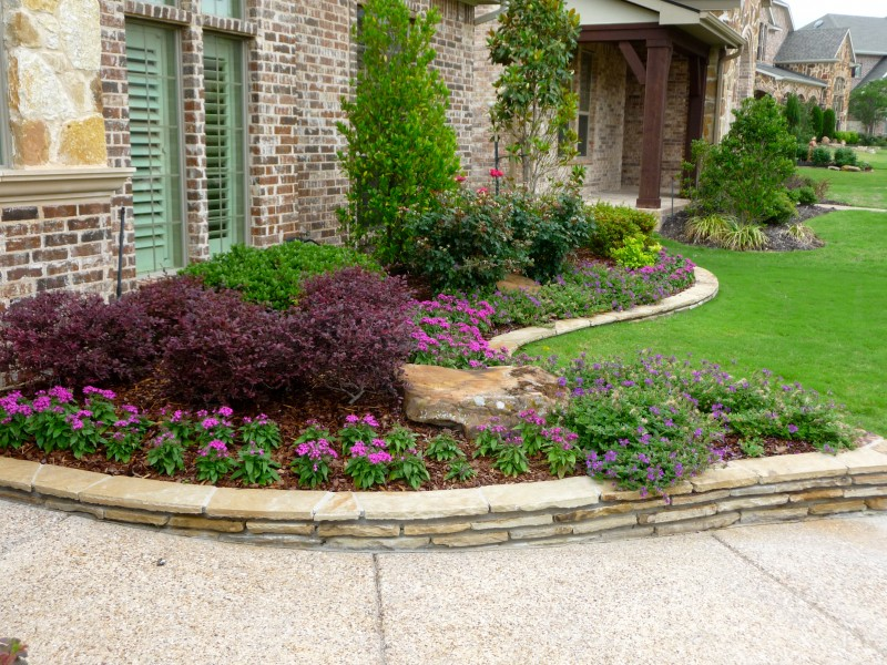 texas landscaping plants photo - 1
